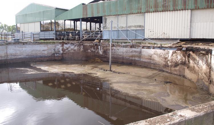 Les digestats sont constitués d'eau à plus de 90 % sous l'effet des lisiers et fumiers de bovins qui sont les principaux intrants dans les méthaniseurs.