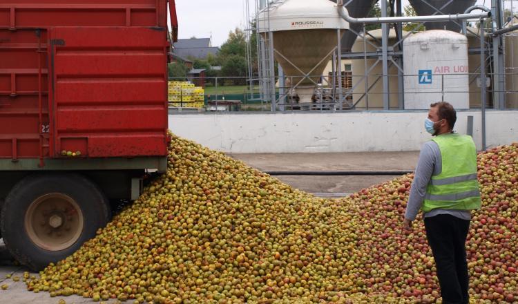 A l'arrivée de la benne sur le parc, un agréeur valide la quantité de pommes livrées. Chaque stockage est répertorié.