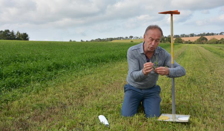 """En parcelle de fauche, les graminées vont moins taller. """"Au semis, il faut augmenter la densité de 5 kg/ha"""", conseille Je"""
