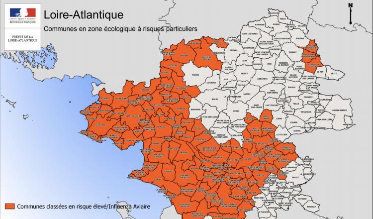 En Loire-Atlantique, 116 communes sont concernées par le confinement des volailles. (source préfecture de Loire-Atlantique)