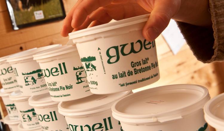 Dans quelques années, le Gwell pourrait devenir la première AOP laitière bretonne.