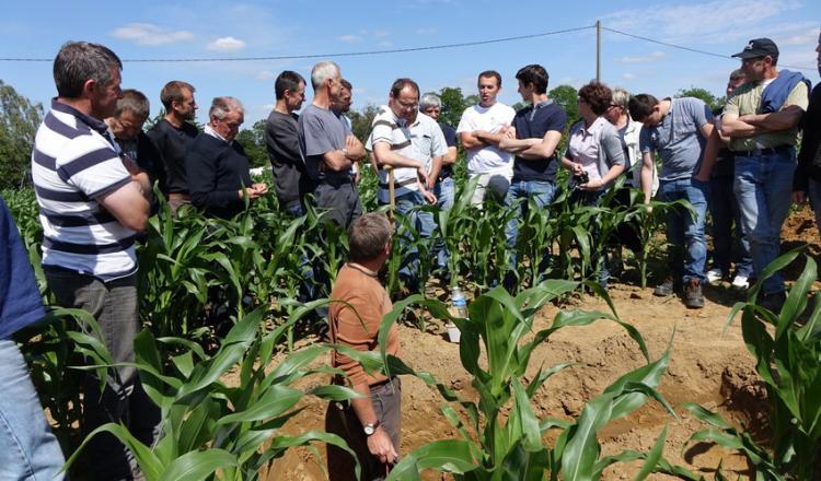 Les groupes d'agriculteurs, tels que Base, se sont appuyés sur les échanges de pratiques entre pairs (ici en Sarthe).