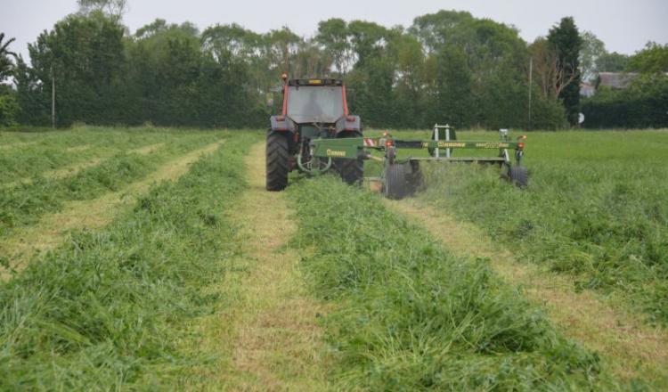 La productivité d'une prairie est meilleure avec un semis à la volée.