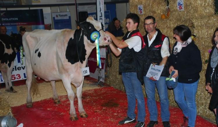 La famille Reillon, champions en famille, avec la Grande championne et sa Réserve, consécration d'une moisson de prix.