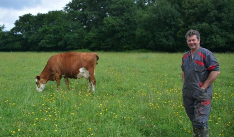 La plus vieille des vaches de Philippe Boullais (ici) a dix-sept ans et quatorze lactations.