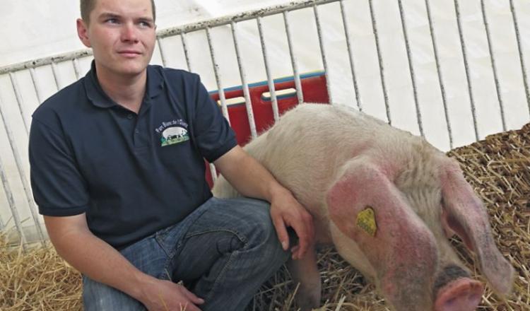 Guillaume Vasseur, présent l'an passé sur la foire, participera au premier concours départemental Porc Blanc de l'Ouest.
