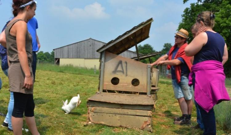 Les porteurs de projet en parcours à l'installation se retrouvent systématiquement chez Pascal Orain (à droite). La construction d'abris pour lapins est un exemple de l'adaptation de chaque éleveur à la production la moins standardisée.