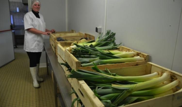 """La Légumerie 53 a été créée en 2014. Elle compte se développer dans ce """"Jardin d'Eden"""" qu'est la Mayenne, où 55000 repas sont servis par jour."""