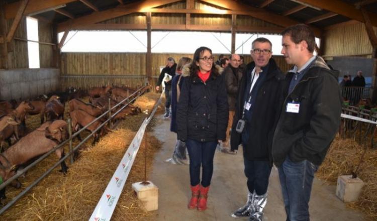 Aurélien Mérienne et son épouse Séverine, avec Hervé Jarry, le directeur de la région Mayenne d'Agrial, ont reçu les visiteurs toute la journée le 9décembre.