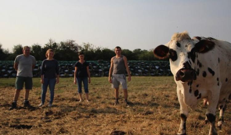 Les quatre associés du Gaec La Normande participeront à l'Interrégional Normand. Ils élèvent 160 vaches sur 150 hectares, pour une production de 1,2million de litres de lait.
