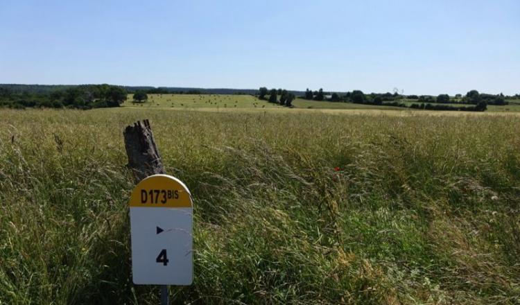 Les Safer se prévalent d'une connaissance unique des marchés fonciers ruraux.