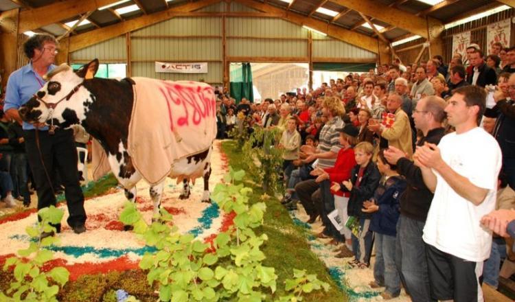 Comme à son habitude, l'association PMS crée cet événement grâce aux éleveurs bénévoles. C'est ce qui fait son originalité et son succès: une vente top génétique organisée par et pour les éleveurs.