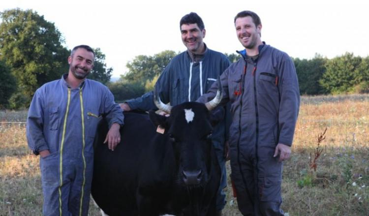 Pour Cédric Briand, Mathieu Hamon et Hervé Mérand, qui posent fièrement avec Fine, il y aura forcément un avant et un après Salon de l'agriculture 2017. (Photo Patrick André)