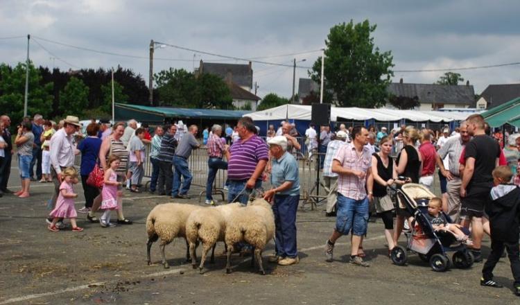 A Mayenne le public répond présent. Les organisateurs ont évalué à près de 30 000 le nombre de visiteurs.