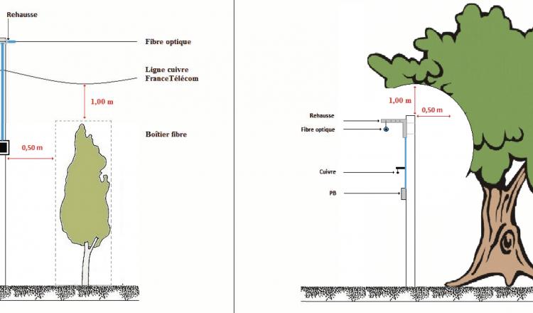 La règle: laisser un mètre au-dessus et en dessous la ligne, et 50 centimètres tout autour du poteau. (source Axione / Conseil départemental de la Sarthe)