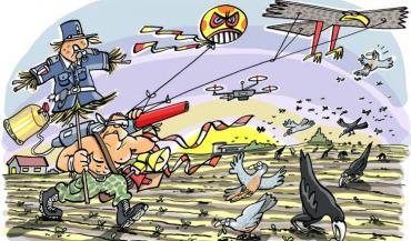 Varier les méthodes de lutte limite l'accoutumance des oiseaux. (illustration Terres Inovia)