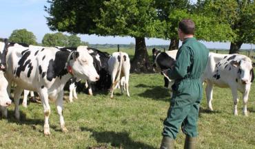Chez Seenovia, pour pallier la moindre présence des conseillers en élevage, la solution Medria a étendu tous ses services gratuitement pour un meilleur suivi du troupeau. (photo Seenovia)