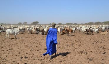 L'Afrique subsaharienne est l'une des zones du globe parmi les plus exposées aux chocs liés aux marchés agricoles mondiaux.