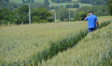 """""""Les agriculteurs ont d'abord appris à s'adapter avec le téléphone"""", relevait un éleveur. Mais """"toutes les solutions ont été utilisées"""" par les entreprises de conseil."""