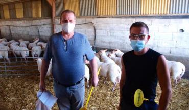 L'Alsacien Alfred Schaefer et le Mosellan Mathieu Grasse ont traversé la France d'Est en Ouest pour venir acheter des béliers reproducteurs Rouge de l'Ouest à la vente de Saint-Hilaire-du-Bois.