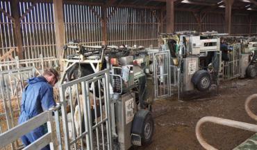 Dans la mesure du possible, la cage de parage doit être placée de manière à laisser les animaux accéder librement au robot de traite.