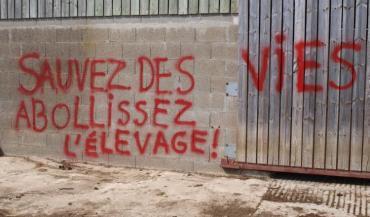 Les militants antispécistes ont tagué les bâtiments.