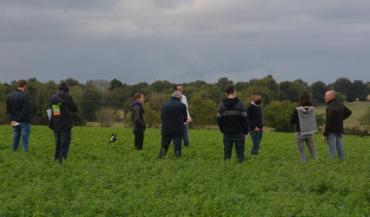 Visite d'une parcelle de luzerne lors de l'après-midi consacré à l'autonomie protéique à Mauges-sur-Loire, mardi. Un