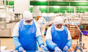 Le nouvel abattoir de volailles d'Ancenis, un investissement de 43/M¬, entrera en fonction en 2022. (photo Stéphane Marchand)
