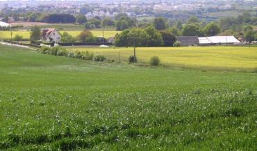Terre de Liens et l'Inrae s'associent pour recenser les nombreuses installations agricoles réalisées par des collectivités....