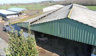 D'une surface de 1700/m2, les bâtiments sont un élément essentiel des infrastructures de cette exploitation d'élevage. Pour...