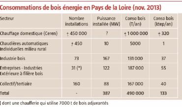 Consommations de bois énergie en Pays de la Loire (nov. 2013)
