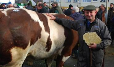 """Jacky Lelong avait amené le bon bœuf à Evron. Sa """"fontaine"""" dans le haut du dos lui a valu le premier prix."""