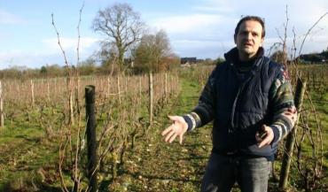 """Loïc Mahé : """"On est sur un lieu unique, un terroir unique, le vin doit avoir la gueule de l'endroit."""""""
