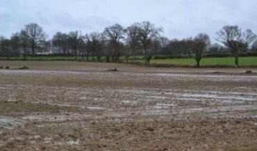 L'eau stagnante en surface traduit un sol tassé et des problèmes de structure (photo d'archives).