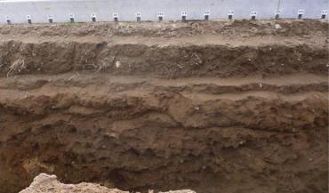 Sous l'horizon labouré au delà de 25cm, on parle de tassement profond, difficilement réversible par le travail du sol. (Photo Vincent Tomis, Agro-transfert-RT)