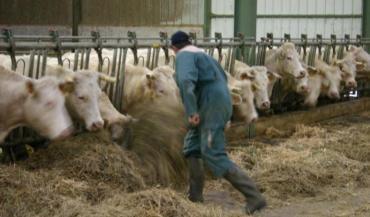 Les procédures prévues conviennent à des grandes entreprises aux travaux normés, faisait remarquer la FNSEA. Comment mesurer la pénibilité d'un métier agricole aux tâches diversifiées?