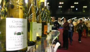 Salon des vins de Loire 2014. Cette année, Interloire lance une action pour valoriser l'appellation muscadet au Royaume-Uni, en ciblant la restauration.