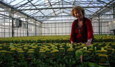 """Claudine Oger, présidente de l'Union horticole de l'Anjou : """"Le CICE c'est une belle blague ! Ça ne compense pas les hausses de TVA !"""""""