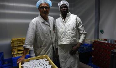 Bruno Briffaut, associé sur le Gaec Bio Avenir à Spay et Ousmane Diop Sylla, stagiaire dans l'atelier de transformation laitière de l'exploitation.