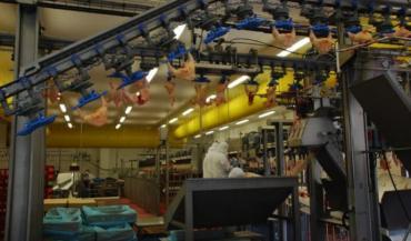 Spécialisé dans l'abattage et la découpe de poulets standards et fermiers, le site de Javron, entièrement rénové, intéresse LDC.