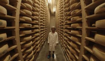 Un tour des fromages en France passe forcément par le comté. Ici, à la fruitière de Plasne-Barretaine dans le Jura. (Photo claire Perrinel)